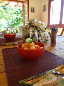 Fruit Ecospa Ilha Grande Island Wellness