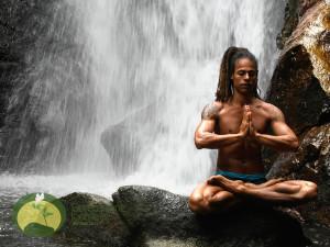 Daniel Almeida  Yoga Teacher Waterfall Meditation Green Stone Journeys Wellness Tours Brazil