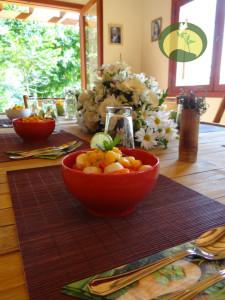Green Stone Journeys Wellness Tours Brazil Ecospa Fruit
