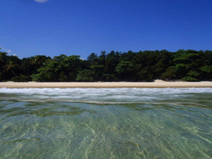 green-stone-journeys-wellness-tours-brazil-ilha-grande-hidden-discovery-shore