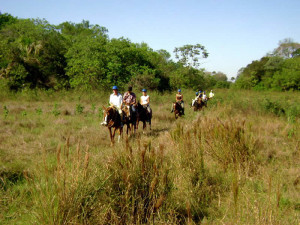 green-stone-journeys-wellness-tours-brazil-pantanal-nature-horseback