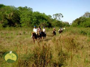 Pantanal Nature Horseback