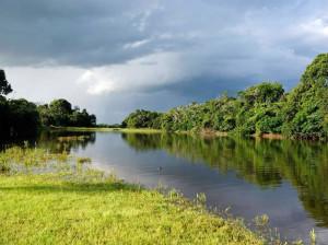 green-stone-journeys-wellness-tours-brazil-pantanal-nature-river