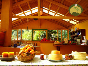 green-stone-journeys-wellness-tours-brazil-visconde-maua-kitchen-health_02