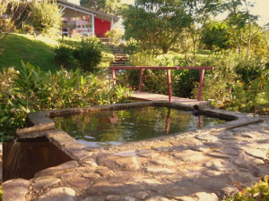 green-stone-journeys-wellness-tours-brazil-visconde-maua-nature-pool