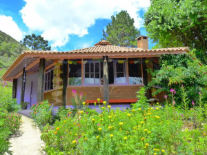 green-stone-journeys-wellness-tours-brazil-visconde-maua-yoga-retreats