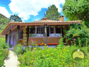 Green Stone Journeys Wellness Tours Brazil Visconde Maua Yoga Retreats