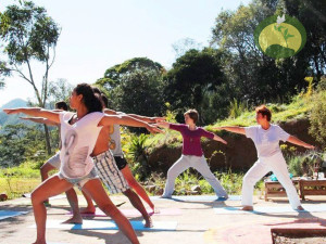 Yoga Wirabhadrasana Green Stone Journeys Wellness Tours Brazil