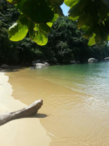 harmony-ilha-grande-beach-green-stone-journeys-wellness-tours-brazil