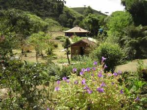 nature-viscande-maua-mountain-coast-green-stone-journeys-wellness-tours