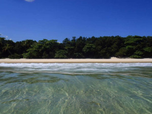 yoga-ilha-grande-island-retreat-shore-green-stone-journeys-wellness-tours-brazil
